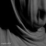 SHR028_koorbash-virgin_dust_sleeve